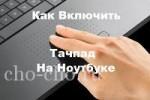 Как на ноутбуке включить тачпад: 3 действенных способа